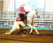 Dexter and Sparky Rein at the 2008 Sunflower Slide Futurity.